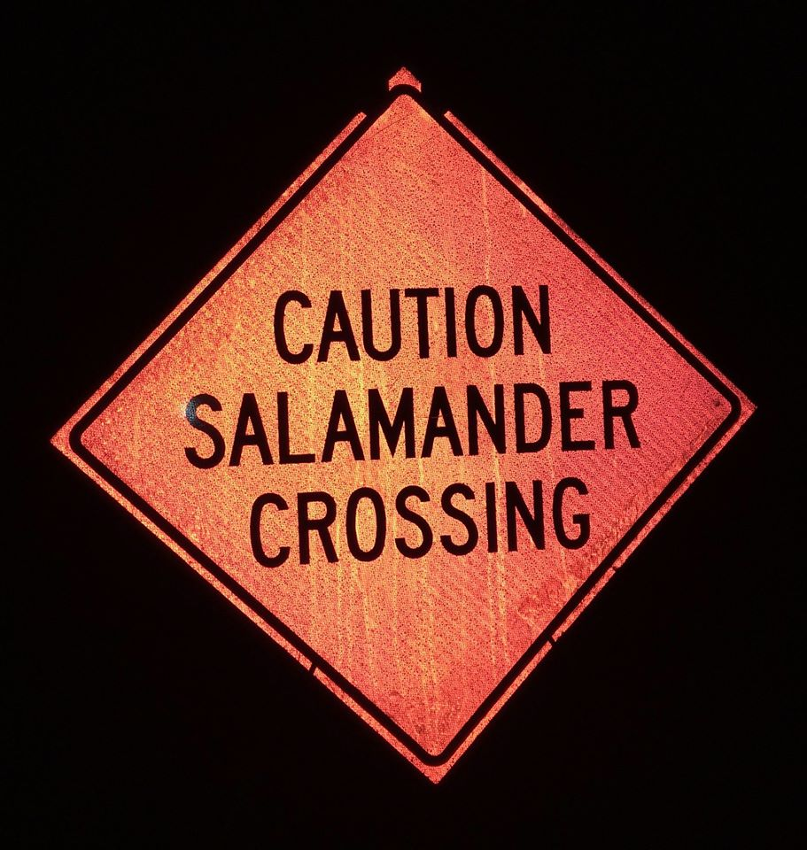 Sal-sign