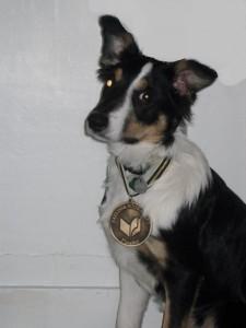 Thurber Medal 2