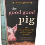 book-pig