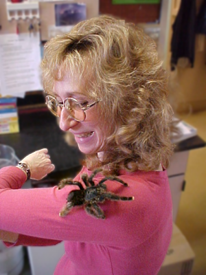 Sy Montgomery and tarantula