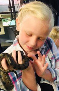 Heidi snake